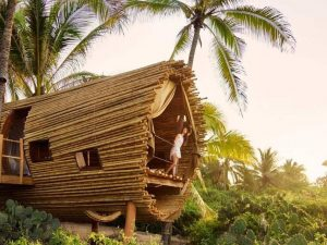 playa viva tree house