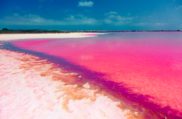 Salt of coloradas